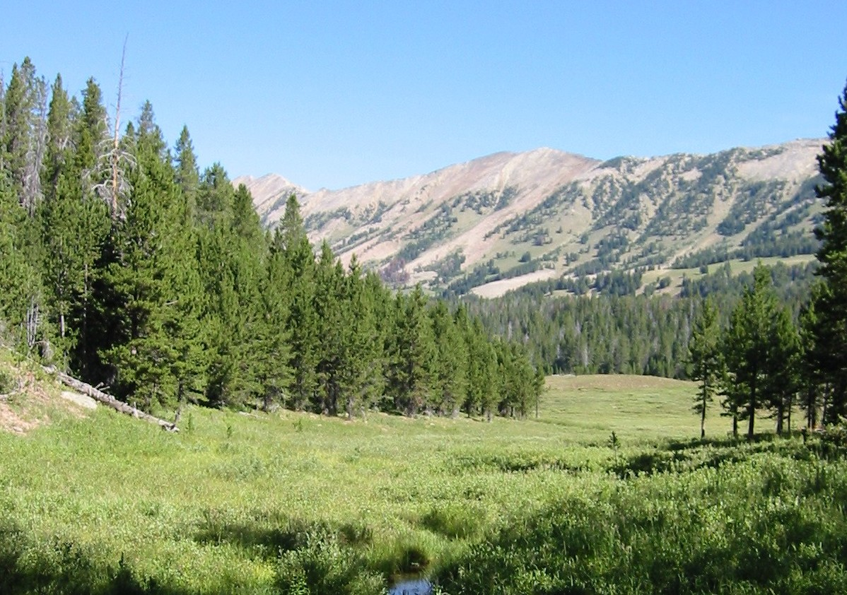 gallatin_national_forest-jpg
