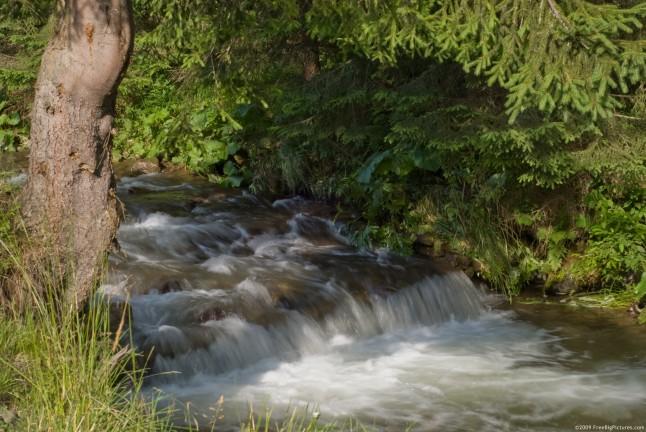 summer-river-646x432-jpg